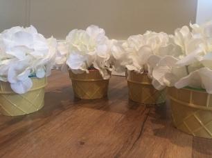 Ice Cream Bowls finished