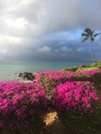 hawaii-18