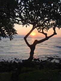 hawaii-36