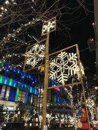 snowflake-lane