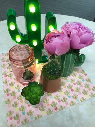 cactus 20