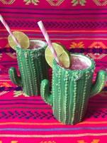 cactus cocktail 10