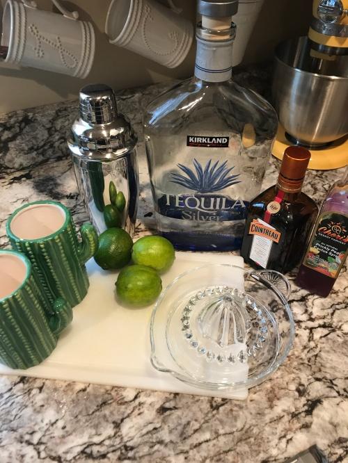 cactus cocktail 12