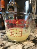 cactus cocktail 14